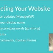 Protecting Your Wordpress Website