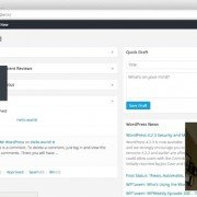 What can I do within the Wordpress Admin Interface